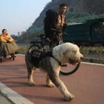 Đạp xe chở bạn gái bị bại liệt đi du lịch khắp nước