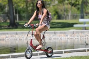 xe đạp điện gấp velomini
