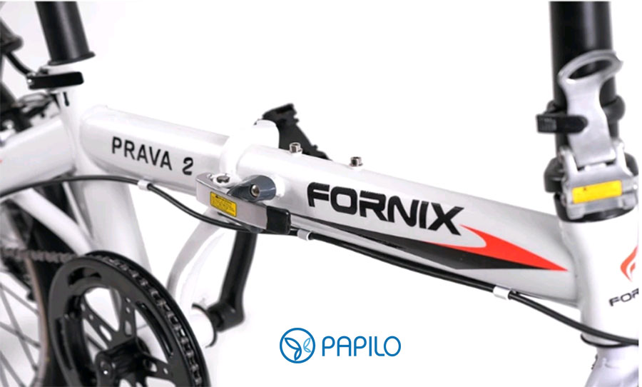 xe-dap-gap-fornix-pra2-trang