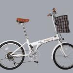 Mua xe đạp gấp qua mạng nên chú ý những vấn đề gì?