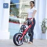 Xe đạp gấp – giải pháp hoàn hảo cho người dân thành phố
