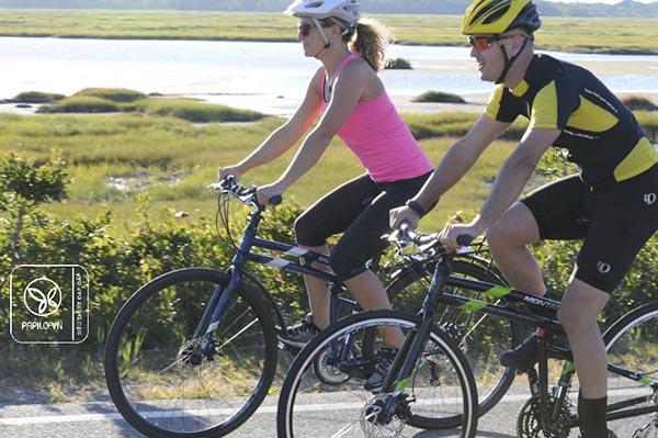 montague-folding-bike-papilo