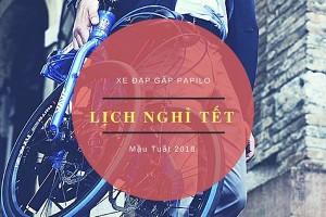 xe-dap-gap-papilo-lich-nghi-tet
