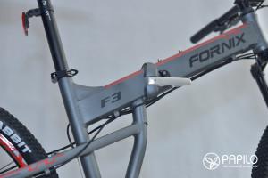 Fornix_f3 (3)